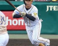 【即決】高山俊さん二軍57試合.213(188-40)3本19打点5盗塁11四球25三振OPS.594(現在絶好調)