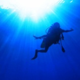 『【旅行】ただいまタオ島★透明度最高の2ndダイビング&グルメ紹介』の画像