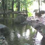 『後谷公園』の画像