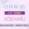 【日向坂46】先ほど発表された『声春っ!』オンラインイベントの詳細が判明!!
