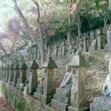 『いつか行きたい日本の名所 長慶寺 五百羅漢』の画像