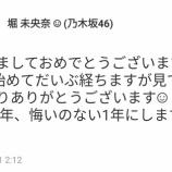 『【乃木坂46】堀未央奈が今年初めに言ったこの言葉、ずっと気になってた・・・』の画像