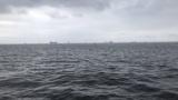 東京湾で魚釣りするで(※画像あり)