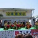 第20回湘南祭2013 その28 フラダンスの2