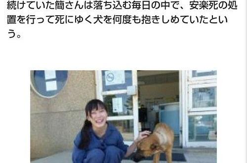 【悲報】700匹の犬畜生を処分したま〇こさん、動物保護団体に叩かれて自らこの世を去るのサムネイル画像