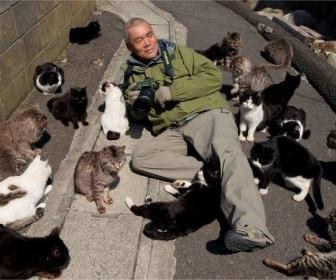 【Nice cat】ノルウェー公共放送。コロナのニュース流すのやめて子猫を延々と放送始まる