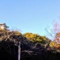 #気持ちのいい朝 #スタバ #お城の下 #木漏れ日