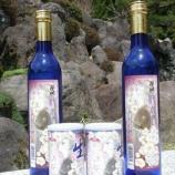 『八重の桜』の画像