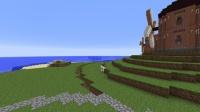 チューリップに囲まれた風車の園を作る (3)