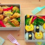 『塩・醤油・カレー!3色唐揚げのお弁当』の画像