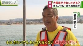 大阪湾が綺麗すぎて地元漁業に深刻なダメージ…「旬の魚」が食べられなくなるかもしれない?一体なぜ??