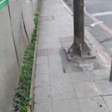 『【怒】台湾の道に物申す』の画像