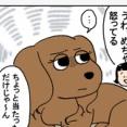 策士の犬にやられる人間
