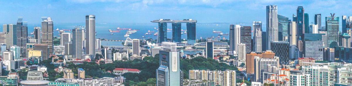 シンガポール在住キャリア女性のブログ(仮) イメージ画像