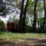『◆松原の赤  5月の筑肥線めぐり④』の画像