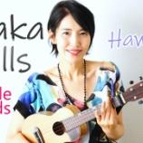 『YouTube「Akaka Falls」』の画像