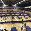 令和元年度北海道卓球選手権大会に参加しました2