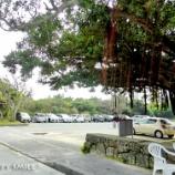 『宮古島旅行2017春:最初で最後の砂山ビーチ』の画像