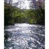 『渓流を正面に見る』の画像