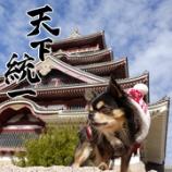 『🏯伏見桃山城に行って来ました🏯』の画像