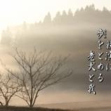 『朝もや』の画像