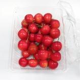 『騙されるな!そいつはプチトマトだ!』の画像
