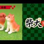 人気の柴犬ガチャフィギュア「柴犬 特選」シリーズ」第3弾が登場!「柴犬 特選3」