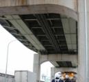 【画像】下りられないニャー 高さ15mの橋脚から猫救う 池田市