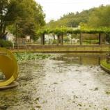 『10月の東大和市公園Ⅱ』の画像