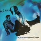 『Bluem of Youth「bloom of youth」サラッとレビュー』の画像