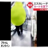 『イオンカート落下犯人特定を5chが誰か場所や動画から検証』の画像
