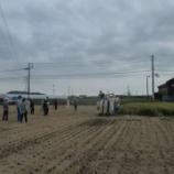 『【北九州】イネ刈り🌾』の画像
