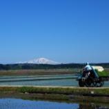『初めての田植え体験』の画像