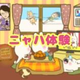 『ニャハ体験〜三が日も離れないよ編〜』の画像