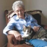 『絆:同じ日に天国へいった猫とおばあさん』の画像
