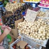 『カルボンマーケットヘジプニーで』の画像