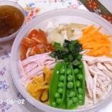 『夏の冷たい麺シリーズ 12-②』の画像