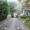 本日は近所の景色をコンデジで撮影(*^_^*)