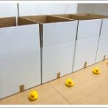 『【実験】白い梱包箱は汚れる?』の画像