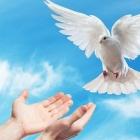 『No12コイノニアは聖霊の交わり無しには成立しない!?』の画像