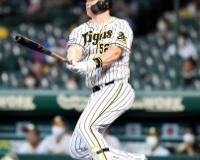 【朗報】セリーグ最強外国人野手、阪神サンズさんに決まってしまうwywywywywywywywy