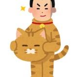 『【悲報】セイキン、猫になる』の画像