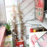 『【中国麺】山西亭(東京・東新宿)』の画像