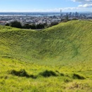 ニュージーランドに春が来ました~♪お散歩中にみつけた癒やしの瞬間パート2