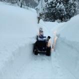 『ドカ雪!』の画像