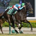 『【福島牝馬S結果】ディアンドルが逃げ切り重賞2勝目』の画像