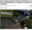 小型飛行機が沼地に墜落→パイロットがワニに喰われる