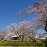 『【写真】Xperia Xc 小岩~佐倉』の画像