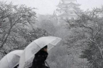 海外「京都は大丈夫か?」この冬一番の大雪報道に日本を心配する海外の人々
