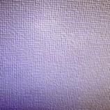 『これは匂わせか…!!??齋藤飛鳥、大園桃子と接触していた可能性が浮上!!!!!!!!!!!!【乃木坂46】』の画像